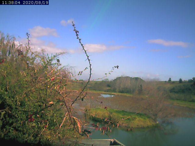 Laibach Webcam near Stellenbosch, South Africa